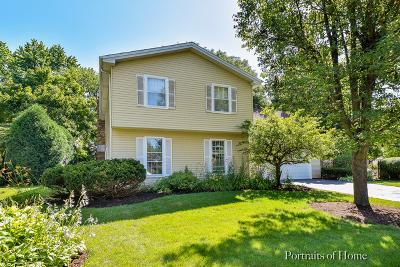 Naperville Single Family Home New: 1168 Banbury Circle