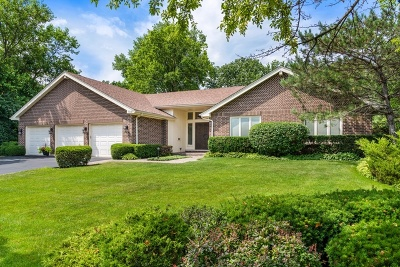 Highland Park Single Family Home New: 1091 Saxony Drive
