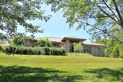 Kane County Single Family Home New: 33w185 Brewster Creek Circle