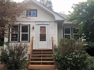 Mc Henry County Single Family Home New: 529 Washington Street