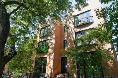 Chicago Condo/Townhouse New: 7300 North Hamilton Avenue #1S