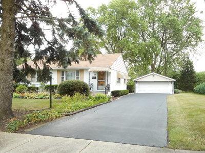 Niles Single Family Home New: 8055 West Church Street