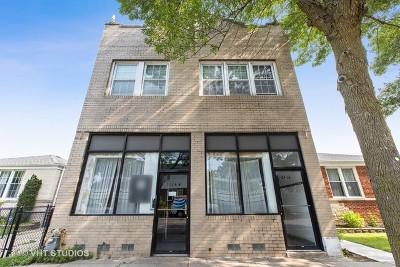 Chicago Multi Family Home New: 2516 West Pratt Boulevard