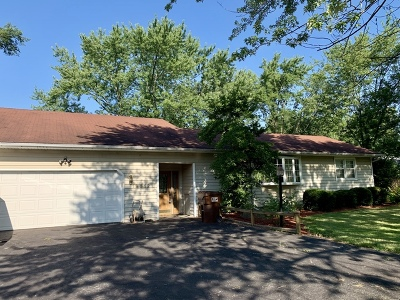 Mokena Single Family Home New: 19812 115th Avenue