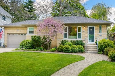 Glen Ellyn Single Family Home For Sale: 339 Scott Avenue