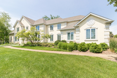 Kane County Single Family Home New: 10n890 York Lane