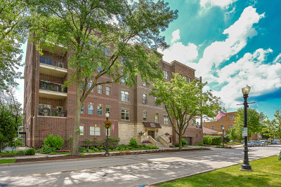 Downers Grove Condo/Townhouse New: 4929 Forest Avenue #2F