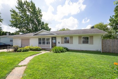 Dwight Single Family Home For Sale: 315 Eisenhower Drive