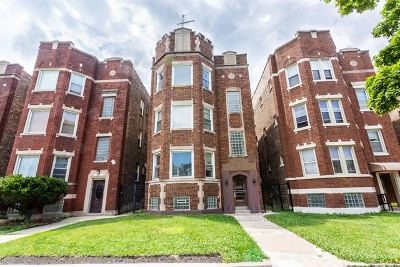 Chicago Multi Family Home New: 7328 South Campbell Avenue