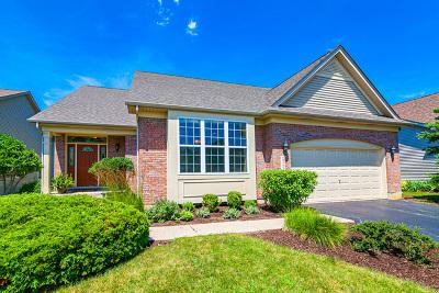 Mundelein Single Family Home Contingent: 2200 Creekwood Drive