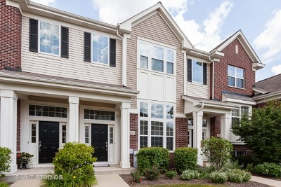 Lemont Condo/Townhouse New: 16729 Brighton Drive