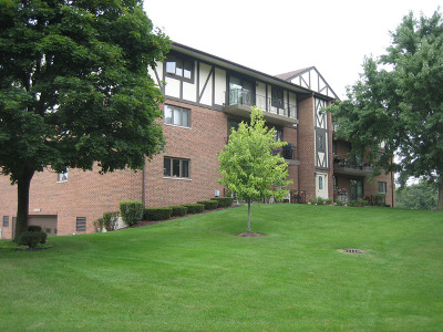 Palos Hills Condo/Townhouse New: 10840 South 84th Avenue #2C