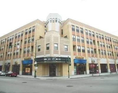 Condo/Townhouse New: 1645 West School Street #315