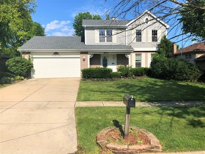 Downers Grove Single Family Home New: 10s241 Wallace Drive