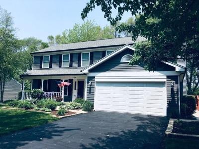 Island Lake Single Family Home For Sale: 514 Wood Creek Drive