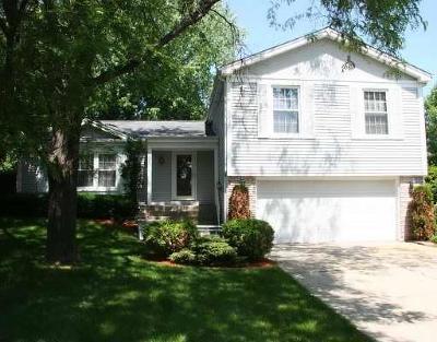 Buffalo Grove Single Family Home New: 1180 Brandywyn Lane