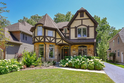 Glen Ellyn Single Family Home New: 751 Elm Street