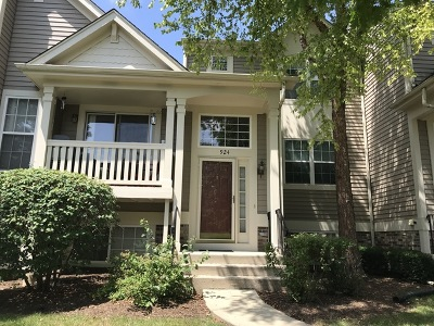Grayslake Condo/Townhouse New: 924 Manchester Circle