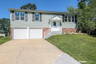 Bolingbrook Single Family Home New: 121 Flagstaff Drive