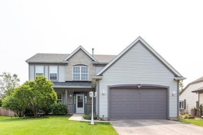 Bolingbrook Single Family Home New: 116 South Palmer Drive
