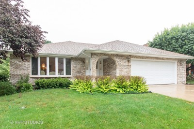 Oak Forest Single Family Home New: 17073 Bonnie Trail West