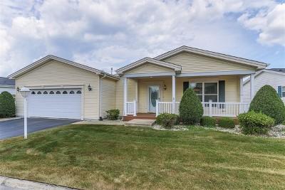Grayslake Single Family Home New: 17 Rocking Horse Lane