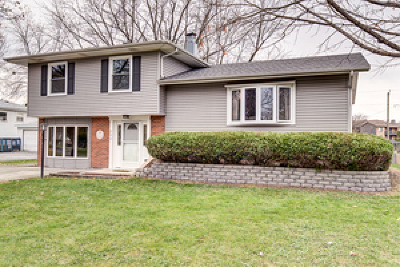 Naperville Single Family Home New: 5s280 Stewart Drive