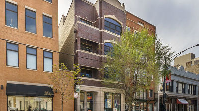Condo/Townhouse New: 1109 West Belmont Avenue #3