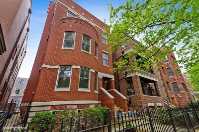 Condo/Townhouse New: 1123 West Altgeld Street #3