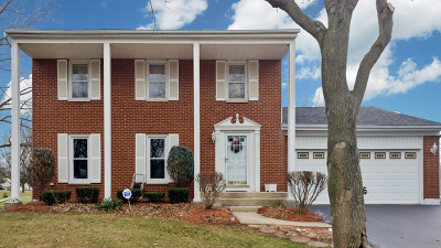 Roselle Single Family Home For Sale: 1307 Bristol Court