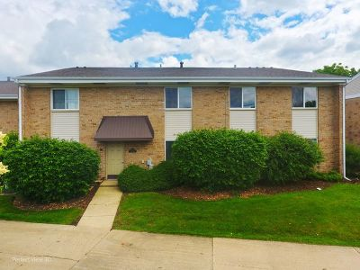 Hoffman Estates Condo/Townhouse New: 1710 Robin Walk #B
