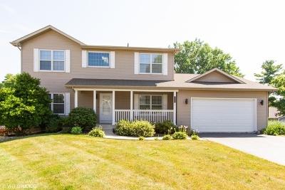 Fox Lake Single Family Home For Sale: 1047 Trudy Lane