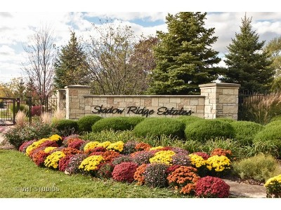 Palos Park Residential Lots & Land New: 117 Forest Edge Drive