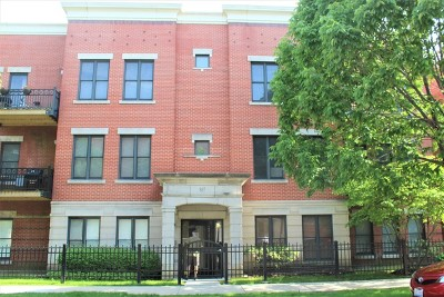 Chicago Condo/Townhouse New: 807 West 14th Place #3A