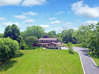 Barrington Single Family Home For Sale: 28801 West Craft Court