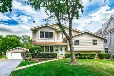Downers Grove Single Family Home For Sale: 5235 Fairmount Avenue