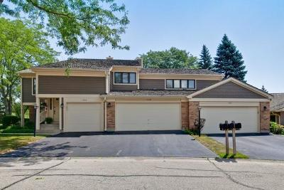 Libertyville Condo/Townhouse Contingent: 1208 Flamingo Parkway