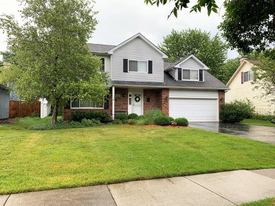 Bolingbrook Single Family Home New: 162 North Canyon Drive