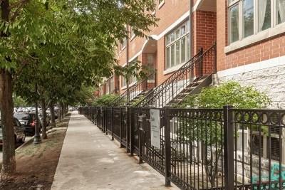 Chicago Condo/Townhouse New: 1806 South Calumet Avenue #1806