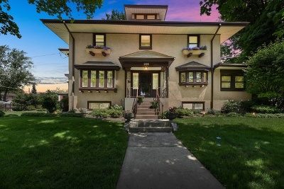 Cook County Single Family Home New: 206 Franklin Avenue
