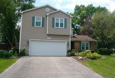 Bolingbrook Single Family Home New: 717 North Ashbury Avenue