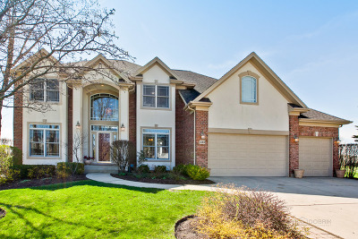 Vernon Hills Single Family Home Contingent: 381 Torrey Pines Way