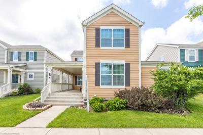 Elgin Single Family Home New: 286 Longview Drive