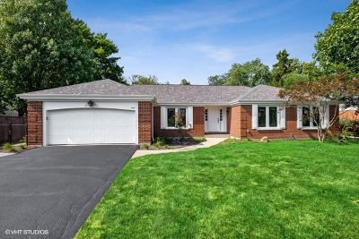 Cook County Single Family Home New: 2928 White Pine Drive