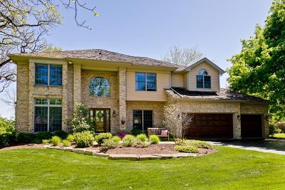 Barrington  Single Family Home New: 28449 Heritage Oaks Road