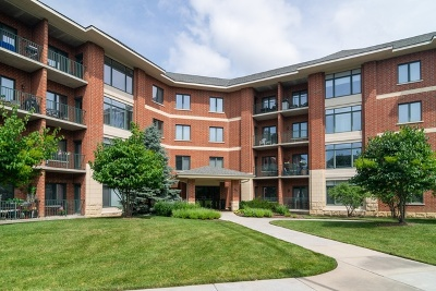 Lombard Condo/Townhouse New: 845 East 22nd Street #206