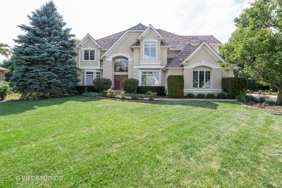 Naperville Single Family Home New: 3111 Treesdale Court