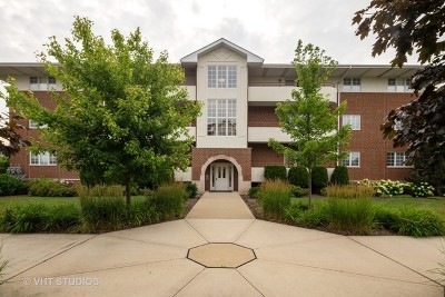 Westmont Condo/Townhouse New: 706 West 63rd Street #203