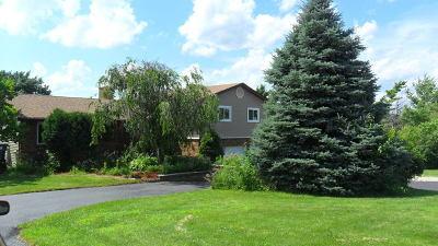 Homer Glen Single Family Home New: 16302 South Bell Road