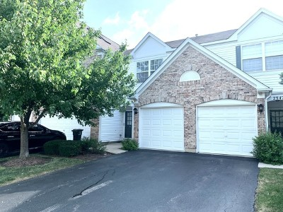 Naperville Condo/Townhouse New: 2940 Stonewater Drive